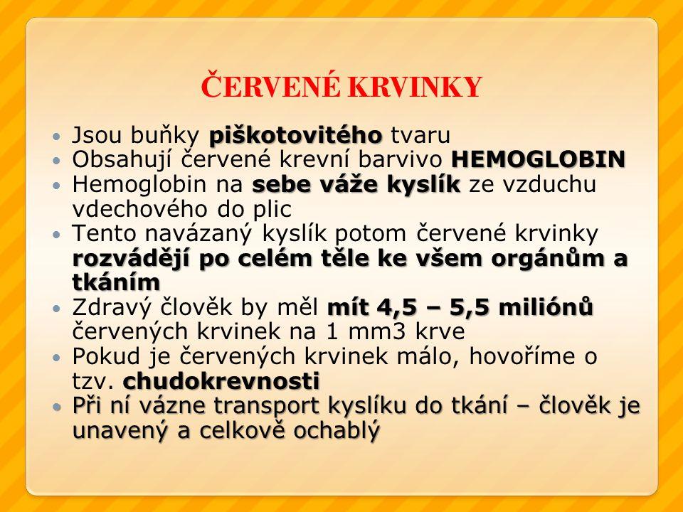 Č ERVENÉ KRVINKY piškotovitého Jsou buňky piškotovitého tvaru HEMOGLOBIN Obsahují červené krevní barvivo HEMOGLOBIN sebe váže kyslík Hemoglobin na seb