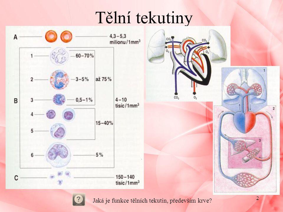 Červené krvinky - erytrocyty Červené krvinky - erytrocyty: –bezjaderné, vznik z kmenových buněk –pružné, při průchodu kapilárami se mohou deformovat –množství: 5,5 milionů v 1mm 3 –tvoří se a dozrávají v červené kostní dřeni, životnost 120dní –zanikají ve slezině: z hemoglobinu se vytváří žlučové barvivo bilirubin, železo opětovné využití železo nutné doplnit v potravě(10-15mg; těhotenství, dospívání –více) funkce erytrocytů: –přenos kyslíku z plic do tkání a kysličníku uhličitého z tkání do plic složky Erytrocytů: –červené barvivo: hemoglobin –hemoglobin: složka HEM – dvojmocné Fe, bílkovinná složka – GLOBIN hemoglobin + O 2 = oxyhemoglobin hemoglobin + CO 2 = karbaminohemoglobin hemoglobin + CO = karboxyhemoglobin – mnohem pevnější, vyřazena výměna plynů