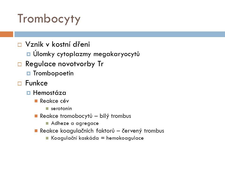 Hemokoagulace  12 koagulačních faktorů  Vnitřní x zevní systém  Společná cesta přes f.X  Změna II → IIa  Změna I → Ia  Poruchy hemokoagulace  Hemofilie  Trombofilie  Za normálních okolností  Hemokoagulace je omezena na oblast poškození + je v rovnováze s fibrinolýzou