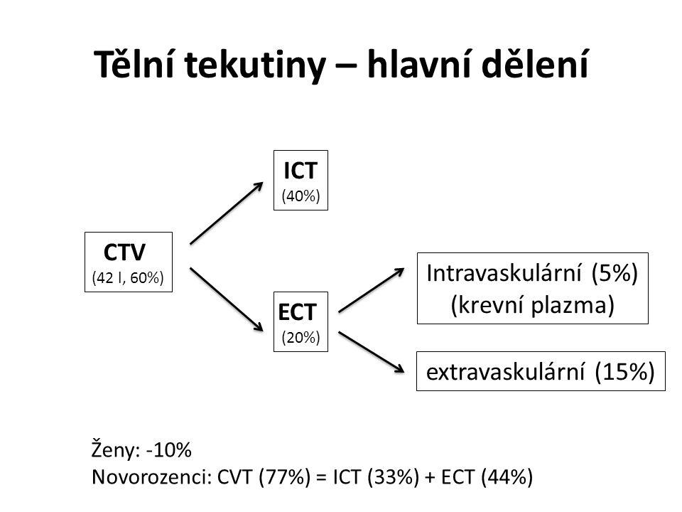 Tělní tekutiny – hlavní dělení CTV (42 l, 60%) ECT (20%) ICT (40%) Intravaskulární (5%) (krevní plazma) extravaskulární (15%) Ženy: -10% Novorozenci: