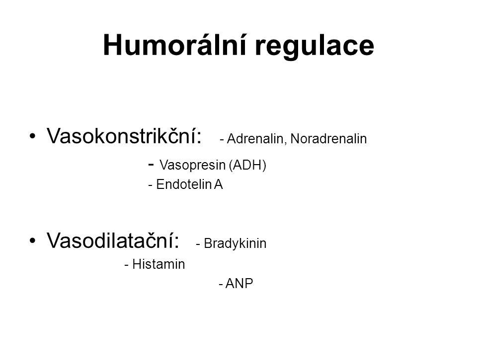 Humorální regulace Vasokonstrikční: - Adrenalin, Noradrenalin - Vasopresin (ADH) - Endotelin A Vasodilatační: - Bradykinin - Histamin - ANP