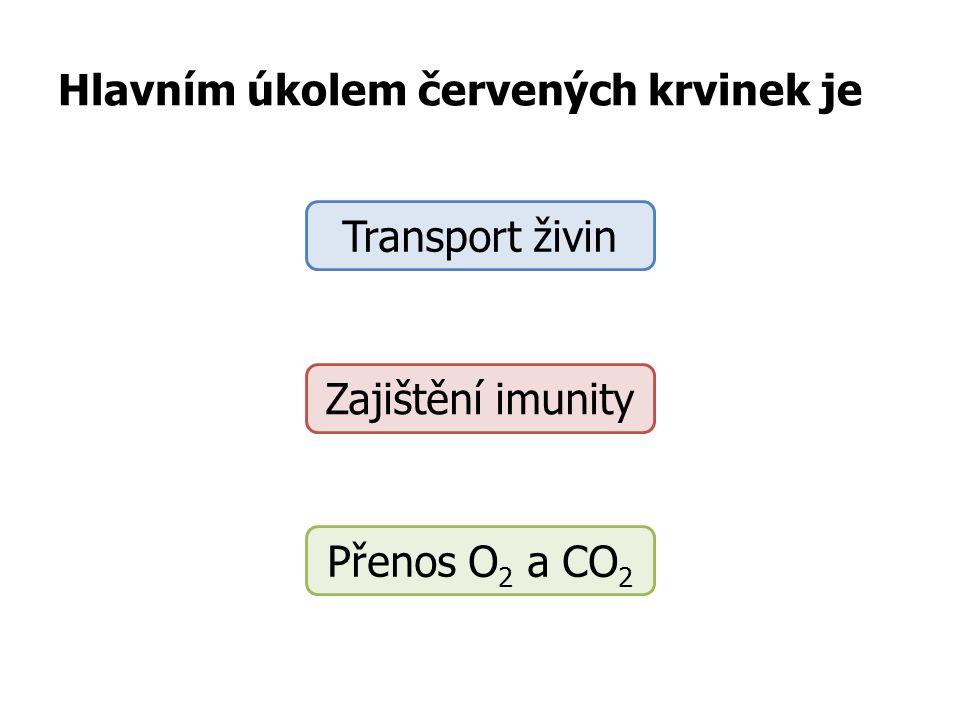 Kyslík a oxid uhličitý prostupuje stěnami Vlásečnic Žil Tepen