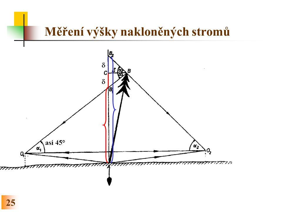 25 Měření výšky nakloněných stromů asi 45°  
