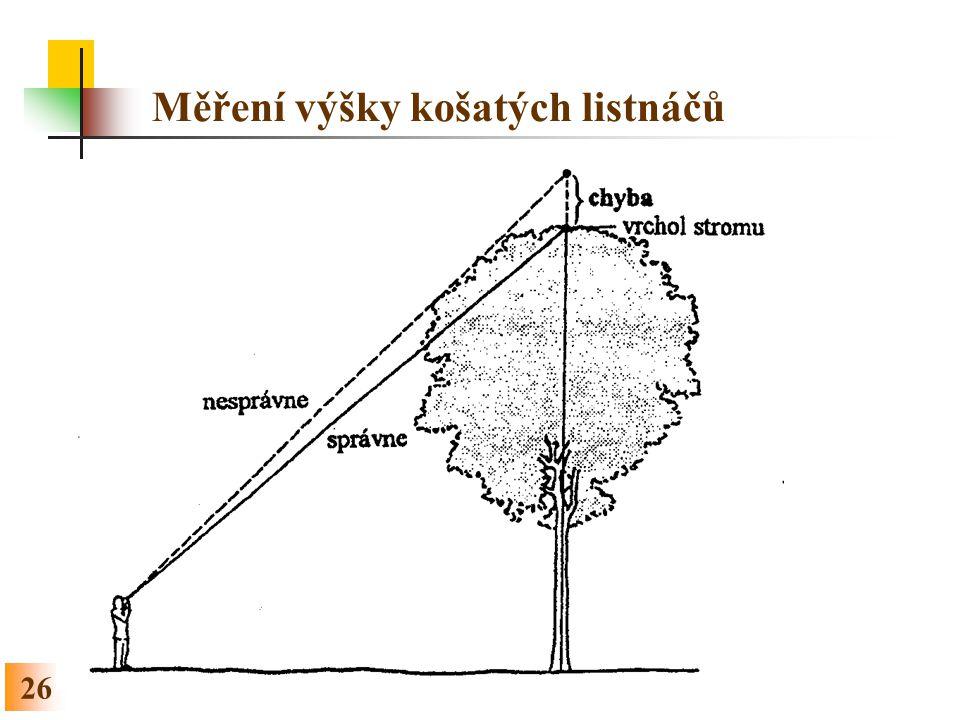 26 Měření výšky košatých listnáčů