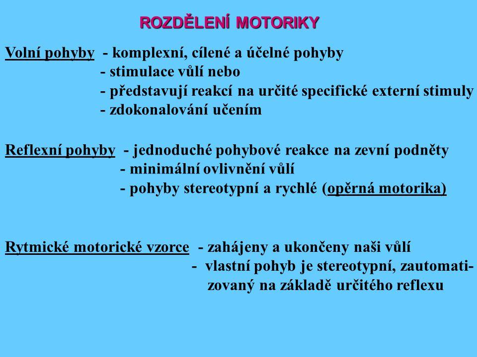 ROZDĚLENÍ MOTORIKY Volní pohyby - komplexní, cílené a účelné pohyby - stimulace vůlí nebo - představují reakcí na určité specifické externí stimuly -