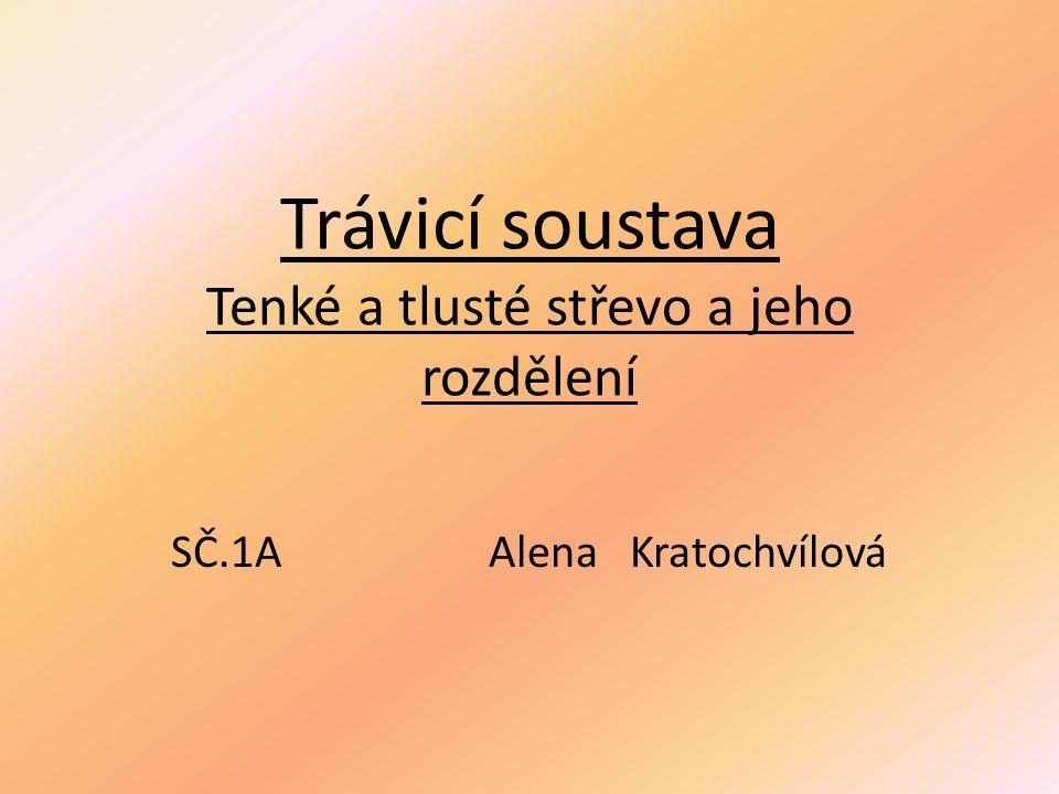 Trávicí soustava Tenké a tlusté střevo a jeho rozdělení SČ.1AAlena Kratochvílová