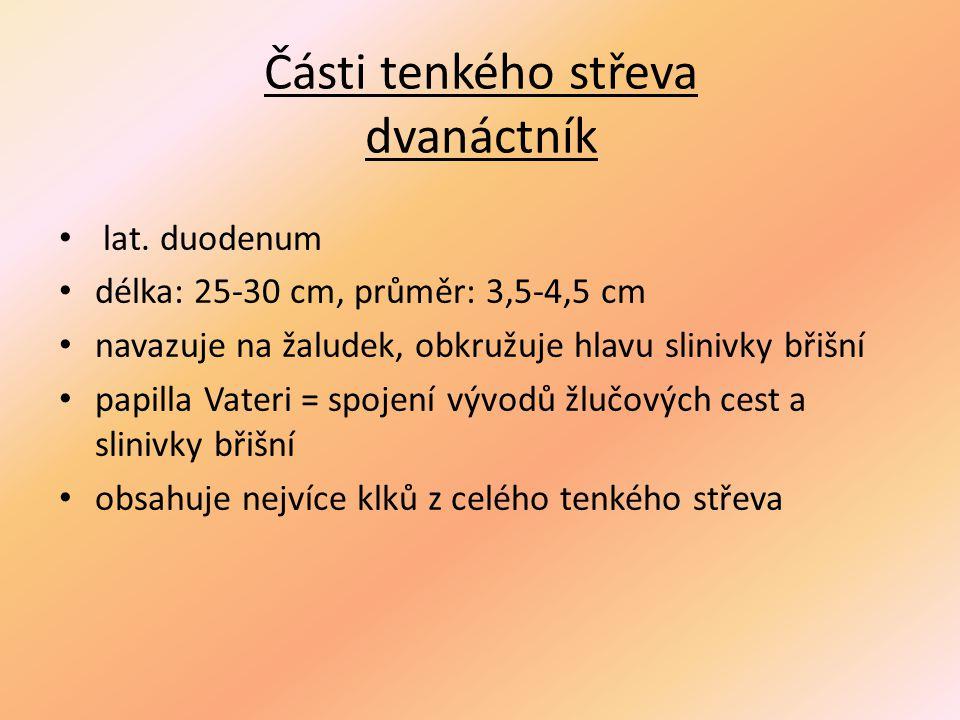 Příklady onemocnění střeva Meckelův divertikl – vrozený divertikl vyskytující se u některých osob na tenkém střevě jako zbytek embryonální tkáně.