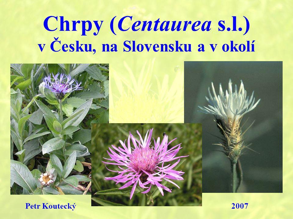Chrpy (Centaurea s.l.) v Česku, na Slovensku a v okolí Petr Koutecký2007
