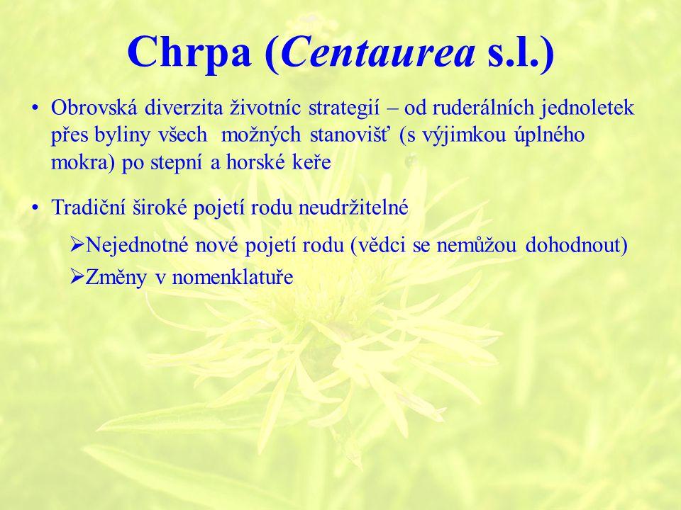 Chrpa (Centaurea s.l.) Tradiční široké pojetí rodu neudržitelné Obrovská diverzita životníc strategií – od ruderálních jednoletek přes byliny všech možných stanovišť (s výjimkou úplného mokra) po stepní a horské keře  Nejednotné nové pojetí rodu (vědci se nemůžou dohodnout)  Změny v nomenklatuře