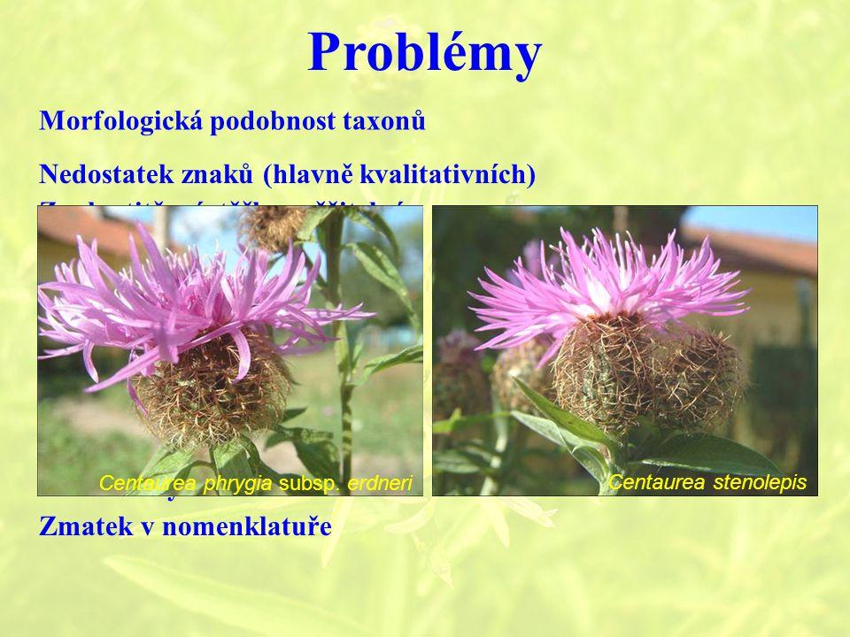 Problémy Morfologická podobnost taxonů Nedostatek znaků (hlavně kvalitativních) Znaky titěrné, těžko měřitelné Malé areály Zmatek v nomenklatuře Hybridizace Polyploidie Morfologická plasticita Centaurea phrygia subsp.