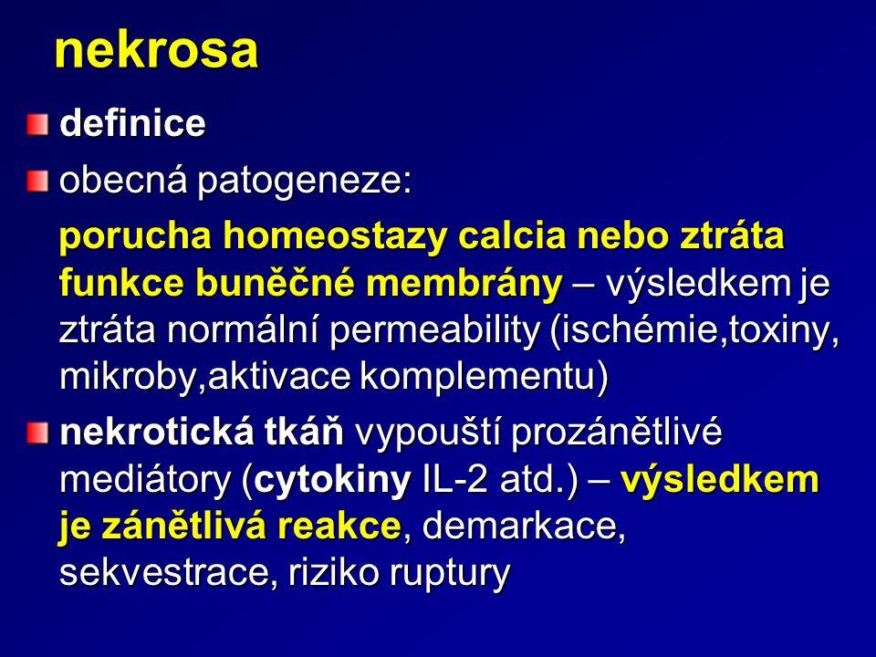 nekrosadefinice obecná patogeneze: porucha homeostazy calcia nebo ztráta funkce buněčné membrány – výsledkem je ztráta normální permeability (ischémie