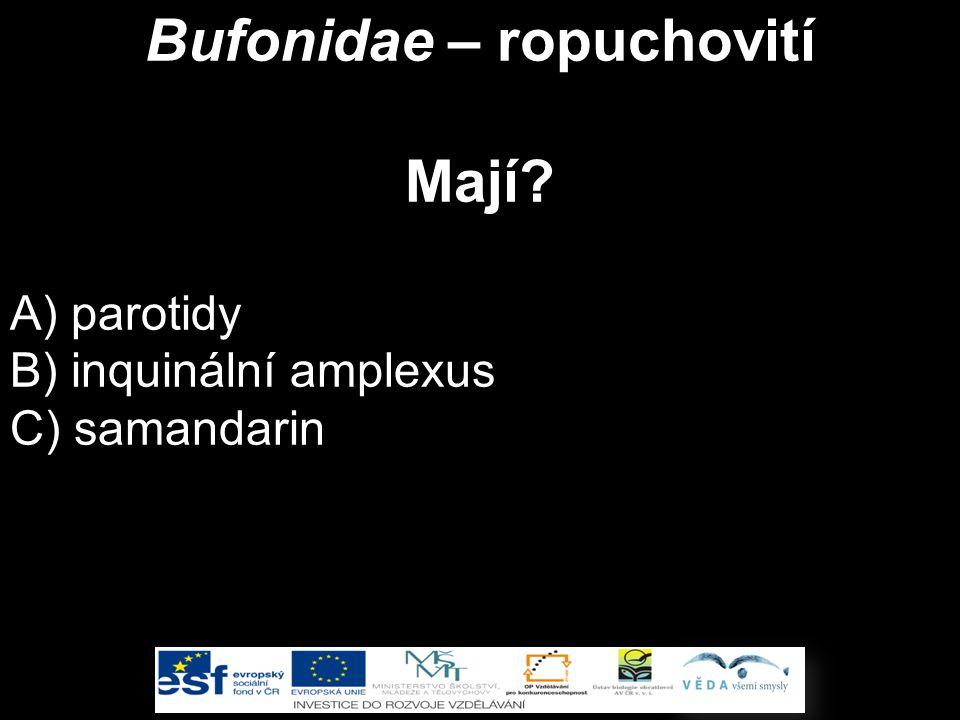 Bufonidae – ropuchovití Mají? A) parotidy B) inquinální amplexus C) samandarin