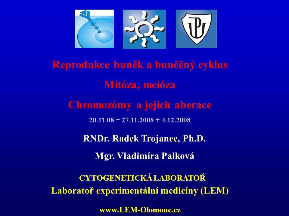 LABORATORY OF EXPERIMENTAL MEDICINE Poruchy buněčné proliferace / buněčného cyklu Přeměna buňky v buňku nádorovou je několika stupňový proces, při němž se kumulují mutace v protoonkogenech, tumor- supresorových genech a mutátorových genech.