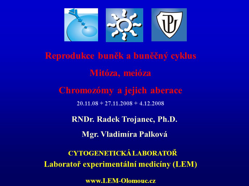 LABORATORY OF EXPERIMENTAL MEDICINE Regulace BC