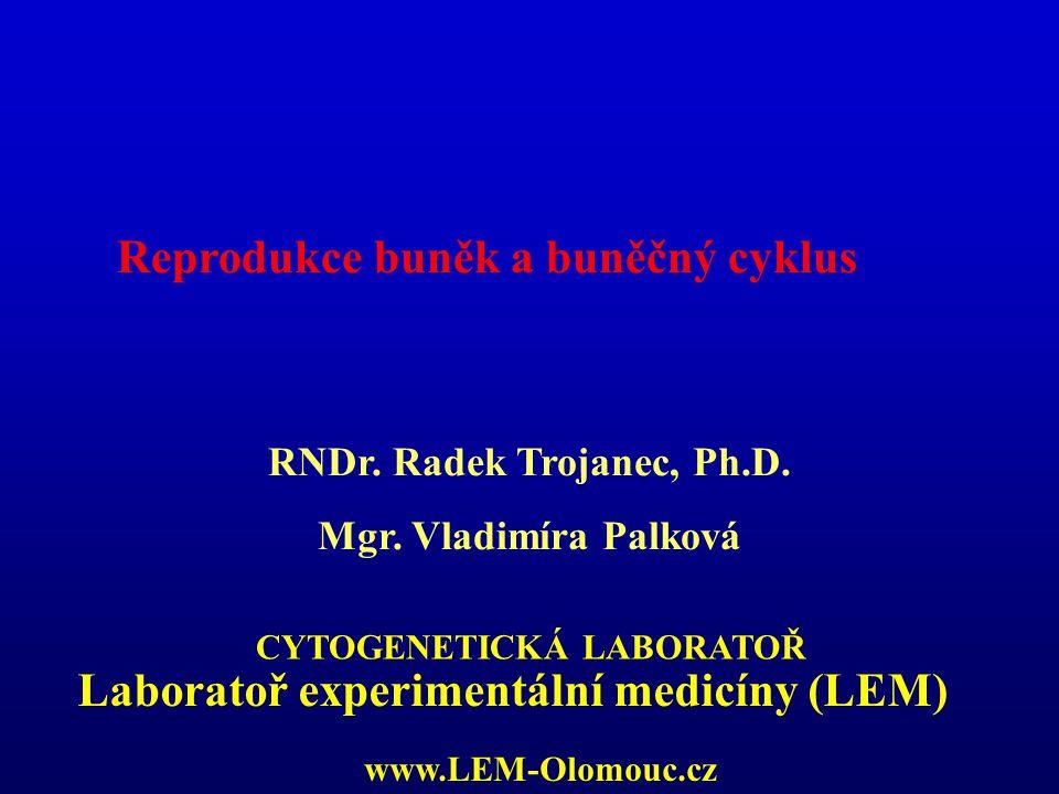 LABORATORY OF EXPERIMENTAL MEDICINE Buněčné dělení: proces, při kterém se mateřská buňka rozdělí na 2 dceřinné - Mitóza (rovnostní dělení) - Meióza (redukční dělení) - Amitóza (zaškrcení)