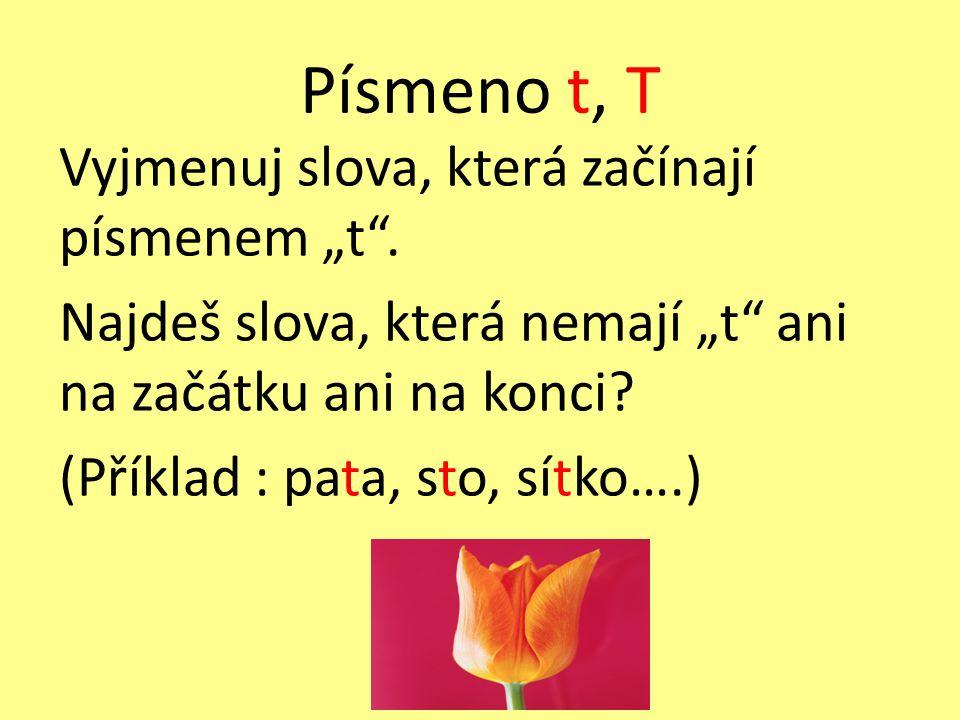 """Písmeno t, T Vyjmenuj slova, která začínají písmenem """"t"""". Najdeš slova, která nemají """"t"""" ani na začátku ani na konci? (Příklad : pata, sto, sítko….)"""