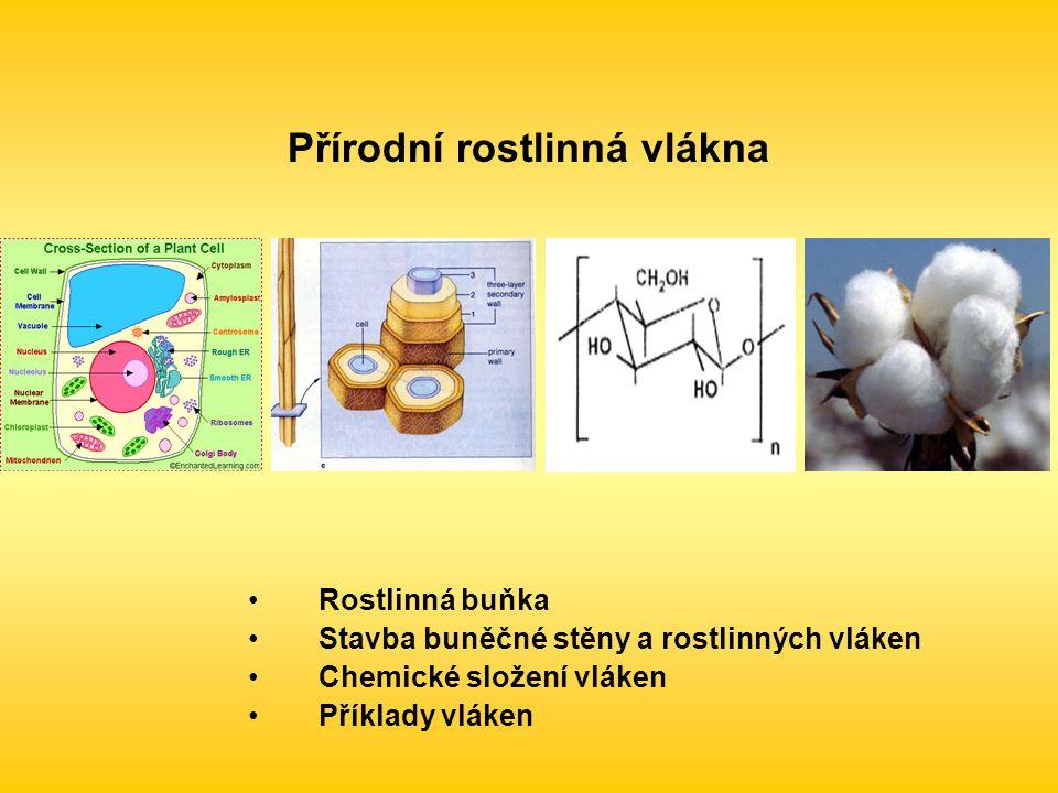 Přírodní rostlinná vlákna Rostlinná buňka Stavba buněčné stěny a rostlinných vláken Chemické složení vláken Příklady vláken