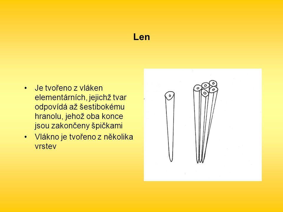 Len Je tvořeno z vláken elementárních, jejichž tvar odpovídá až šestibokému hranolu, jehož oba konce jsou zakončeny špičkami Vlákno je tvořeno z několika vrstev