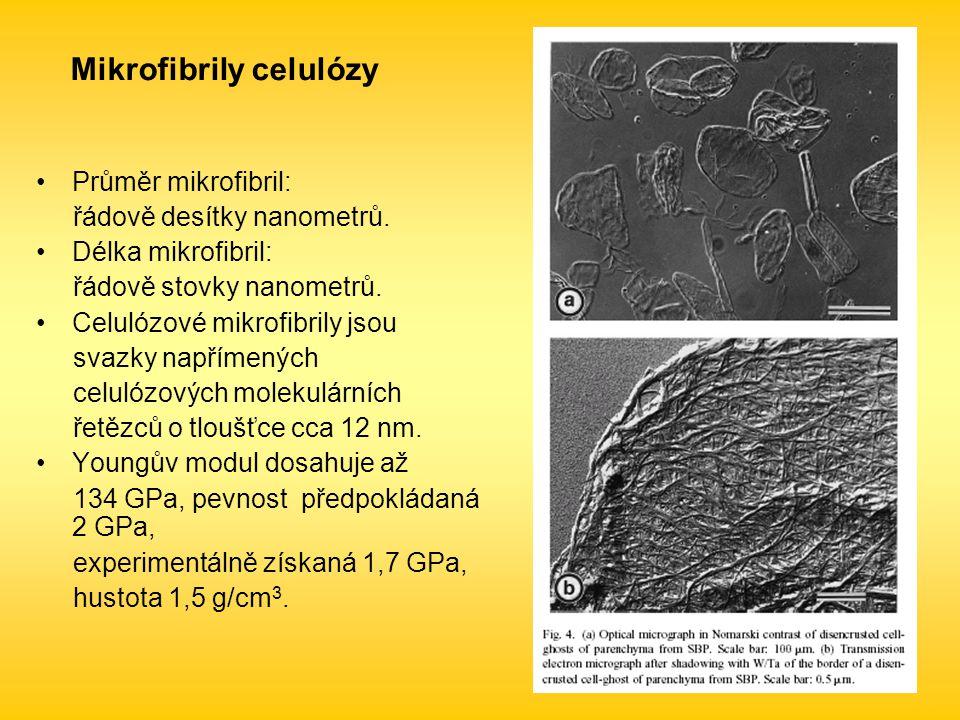 Mikrofibrily celulózy Průměr mikrofibril: řádově desítky nanometrů.