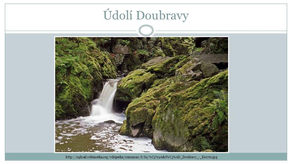 Údolí Doubravy http://upload.wikimedia.org/wikipedia/commons/6/69/%C3%9Adol%C3%AD_Doubravy_-_Koryto.jpg