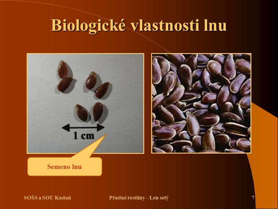 SOŠS a SOU KadaňPřadné rostliny - Len setý7 Biologické vlastnosti lnu Semeno lnu