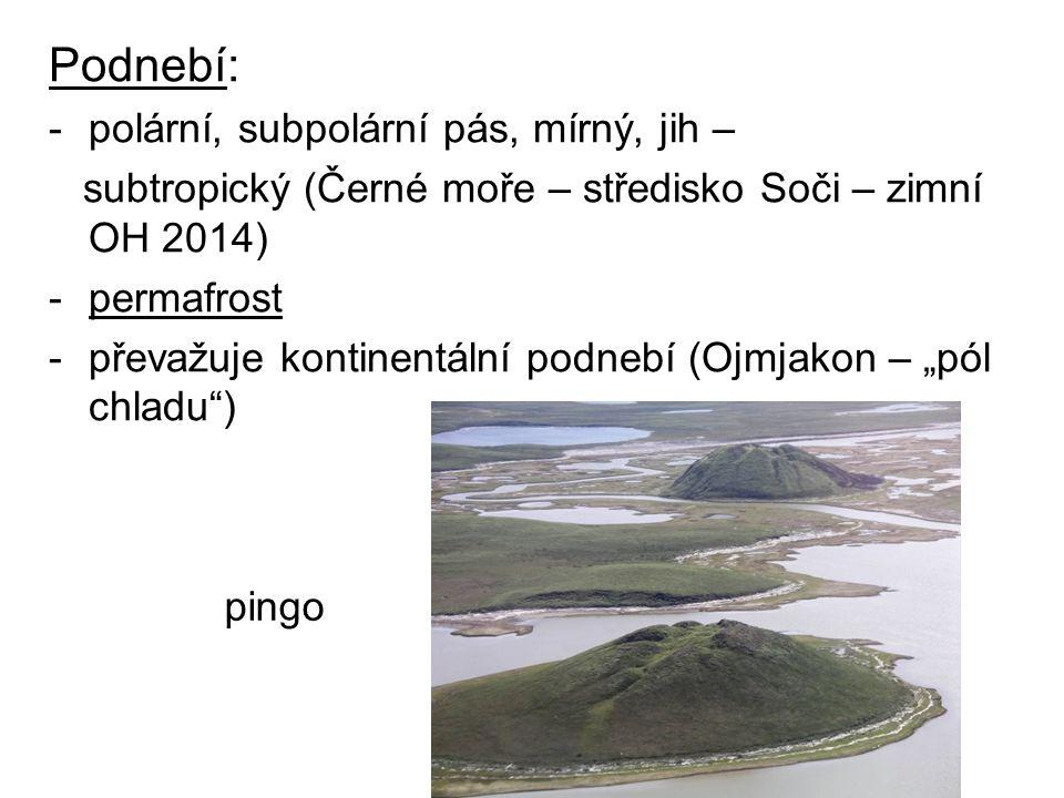 Podnebí: -polární, subpolární pás, mírný, jih – subtropický (Černé moře – středisko Soči – zimní OH 2014) -permafrost -převažuje kontinentální podnebí
