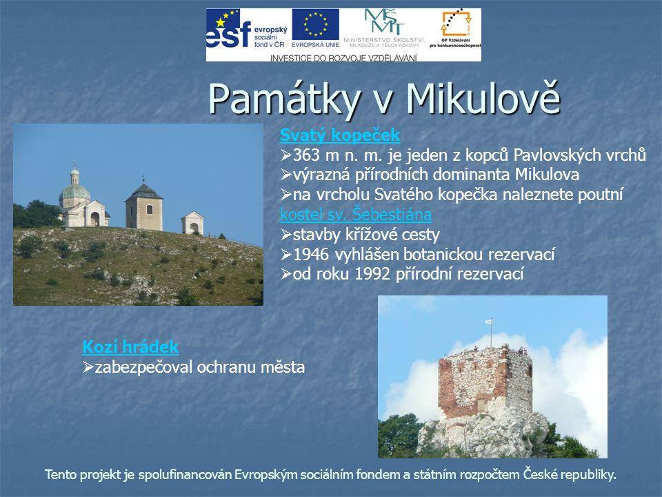 Památky v Mikulově Kozí hrádek   zabezpečoval ochranu města Svatý kopeček   363 m n. m. je jeden z kopců Pavlovských vrchů   výrazná přírodních