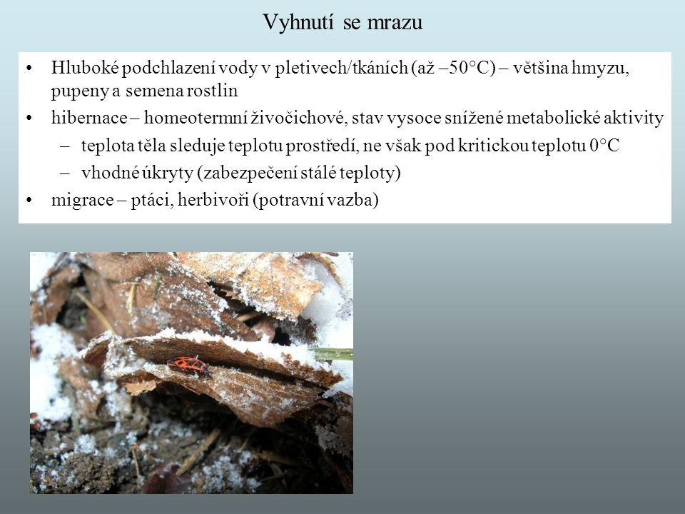 Vyhnutí se mrazu Hluboké podchlazení vody v pletivech/tkáních (až –50°C) – většina hmyzu, pupeny a semena rostlin hibernace – homeotermní živočichové,