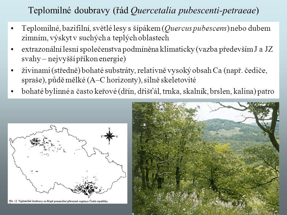 Teplomilné doubravy (řád Quercetalia pubescenti-petraeae) Teplomilné, bazifilní, světlé lesy s šípákem (Quercus pubescens) nebo dubem zimním, výskyt v