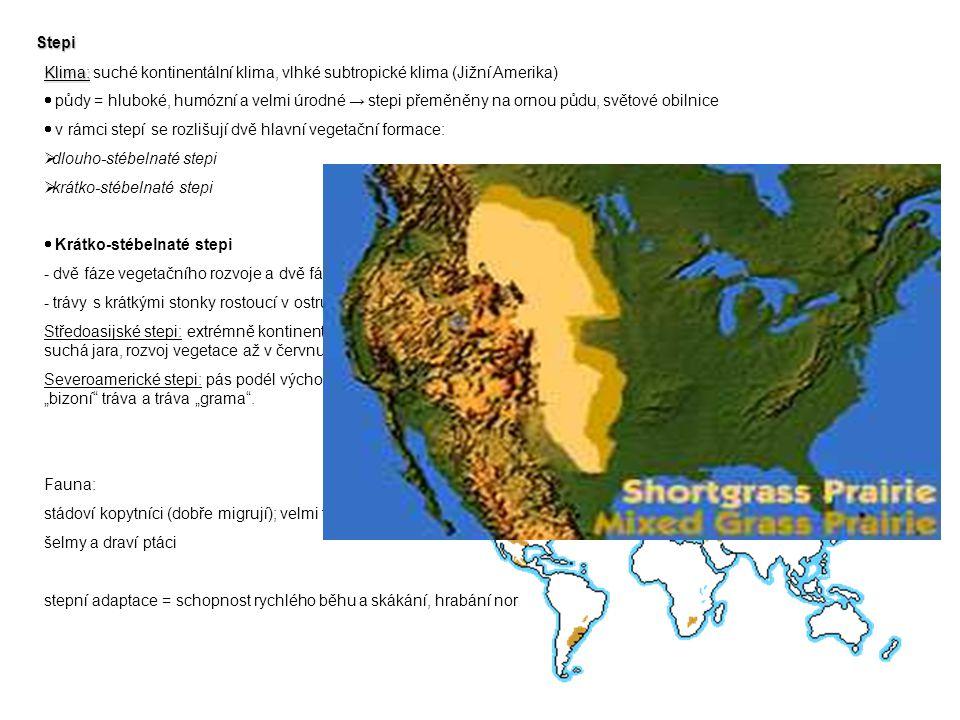 Stepi Klima: Klima: suché kontinentální klima, vlhké subtropické klima (Jižní Amerika)  půdy = hluboké, humózní a velmi úrodné → stepi přeměněny na o