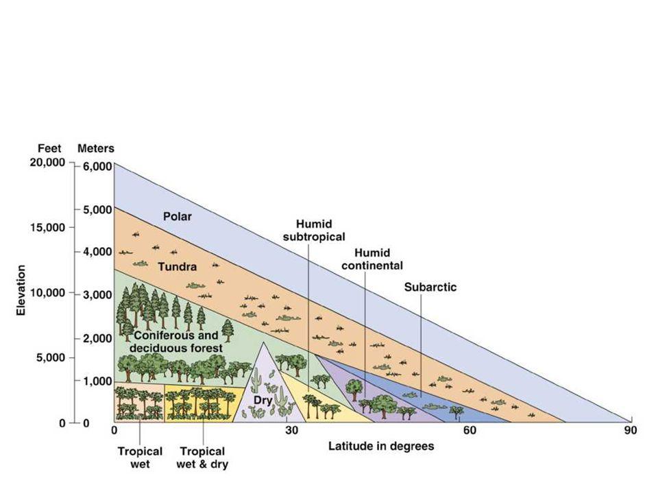 Sklerofytní lesy (mediteránního typu) středomořské klima = sucho, horko, mírná zima, časté požáry Středomoří, Kalifornie, Chile, Kapská oblast v jižní Africe, Austrálie rozlišují se tři vegetační formace slerofytního lesa: sklerofytní les – se zapojenou klenbou stromů sklerofytní řídkolesí – stromy pokrývají pouze 25 – 60% plochy sklerofytní křoviny – křoviny pokrývají zhruba 1/2 povrchu stromy a keře jsou adaptovány na letní horka malými, tvrdými, kožovitými, tlustými listy bránícími ztrátě vody transpirací Středomoří: korkový dub, dub cesmínový, borovice, olivy; dnes většinou náhradní křovinaté formace = macchie Kalifornie: pobřežní horské hřbety – různé druhy dubů; jižněji se vyskytují přirozené sklerofytní křoviny = chaparral