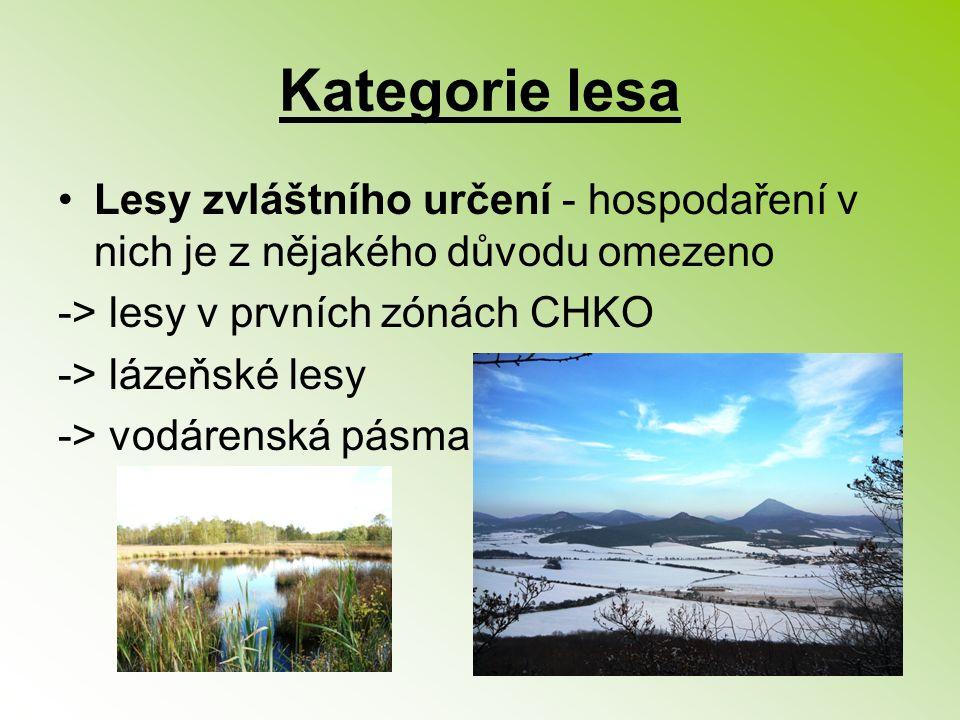 Kategorie lesa Lesy zvláštního určení - hospodaření v nich je z nějakého důvodu omezeno -> lesy v prvních zónách CHKO -> lázeňské lesy -> vodárenská p