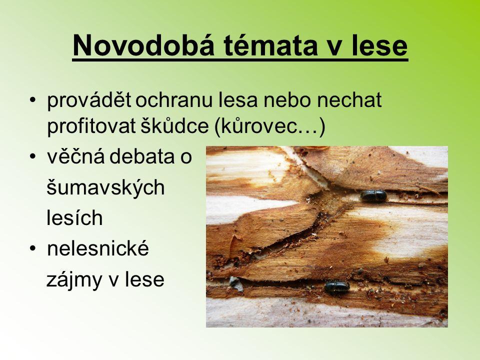 Novodobá témata v lese provádět ochranu lesa nebo nechat profitovat škůdce (kůrovec…) věčná debata o šumavských lesích nelesnické zájmy v lese
