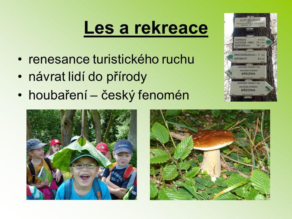 Les a rekreace renesance turistického ruchu návrat lidí do přírody houbaření – český fenomén