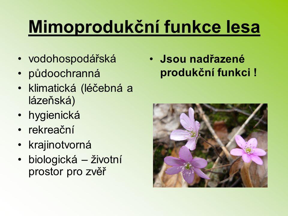 Mimoprodukční funkce lesa vodohospodářská půdoochranná klimatická (léčebná a lázeňská) hygienická rekreační krajinotvorná biologická – životní prostor