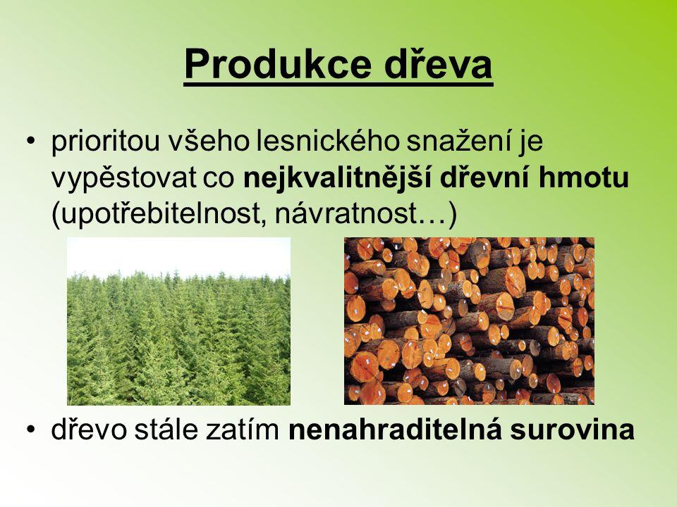 Produkce dřeva prioritou všeho lesnického snažení je vypěstovat co nejkvalitnější dřevní hmotu (upotřebitelnost, návratnost…) dřevo stále zatím nenahr