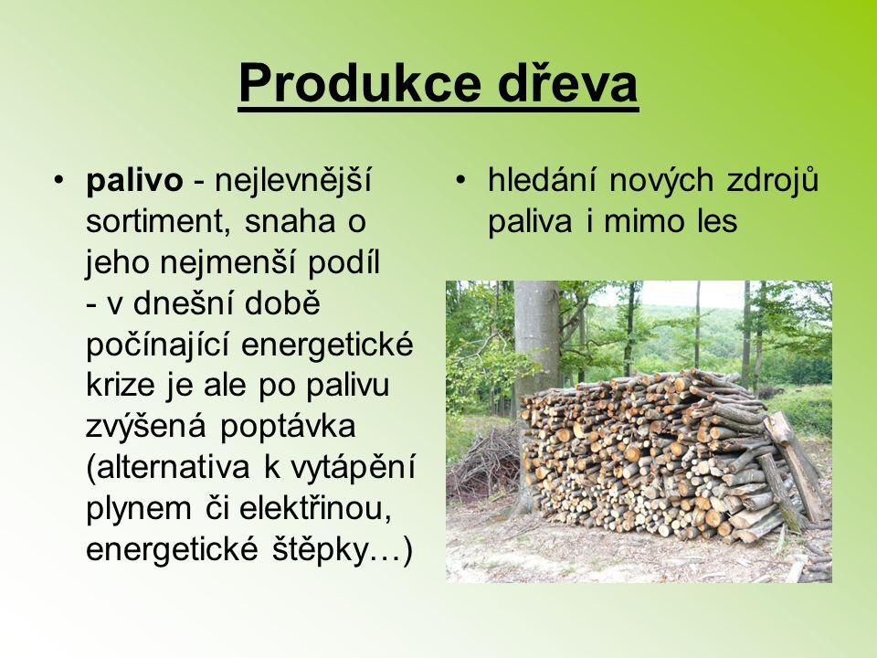 Produkce dřeva palivo - nejlevnější sortiment, snaha o jeho nejmenší podíl - v dnešní době počínající energetické krize je ale po palivu zvýšená poptá