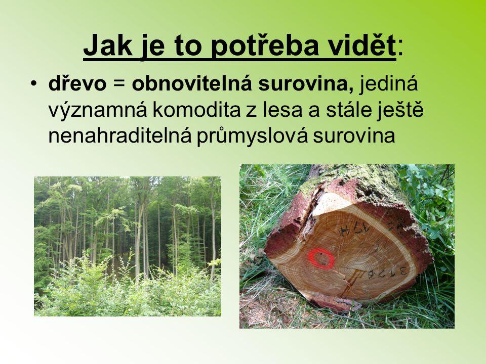 Jak je to potřeba vidět: dřevo = obnovitelná surovina, jediná významná komodita z lesa a stále ještě nenahraditelná průmyslová surovina