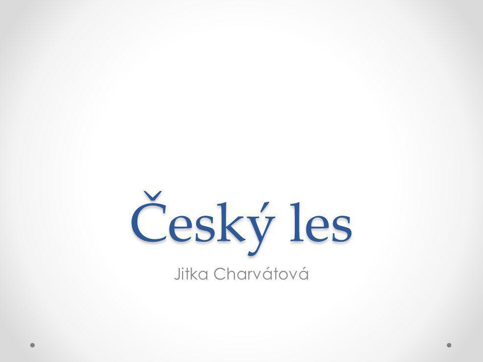 Český les Jitka Charvátová