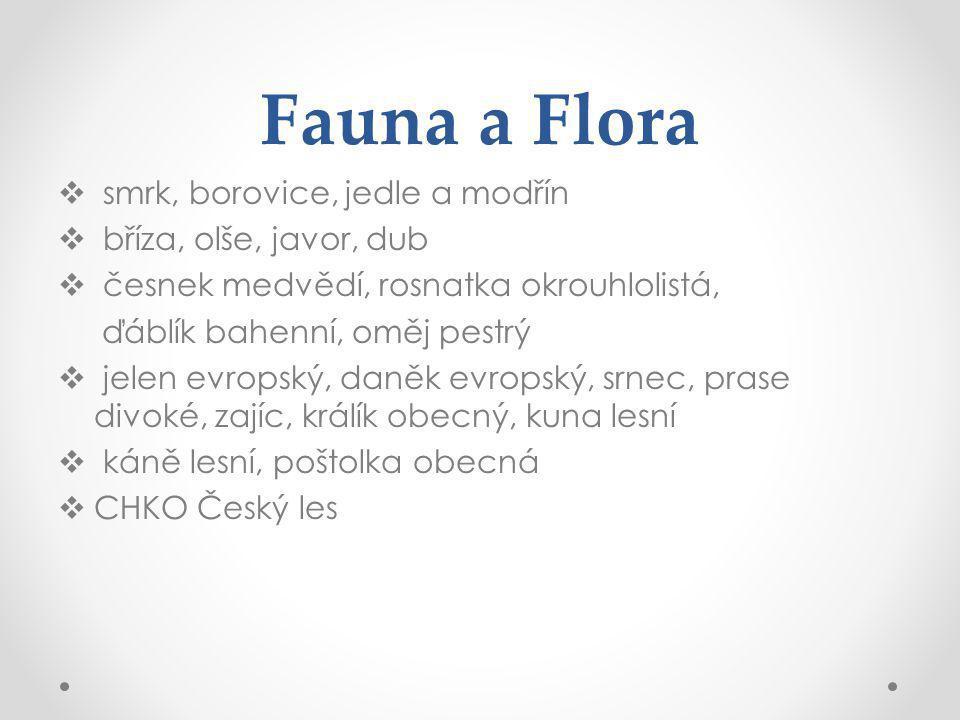 Fauna a Flora  smrk, borovice, jedle a modřín  bříza, olše, javor, dub  česnek medvědí, rosnatka okrouhlolistá, ďáblík bahenní, oměj pestrý  jelen