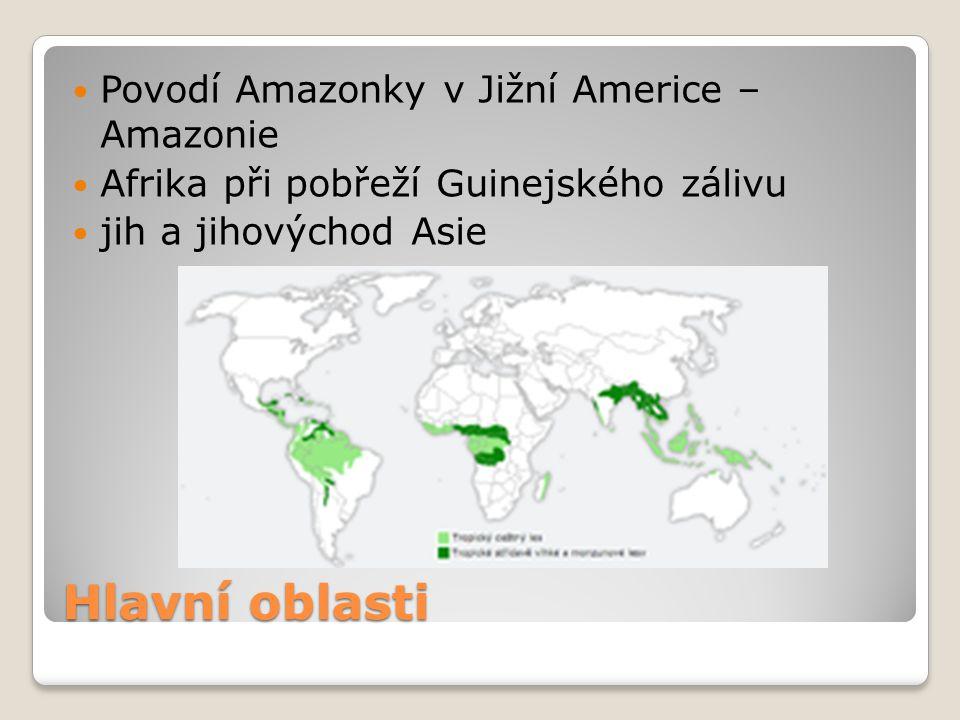 Hlavní oblasti Povodí Amazonky v Jižní Americe – Amazonie Afrika při pobřeží Guinejského zálivu jih a jihovýchod Asie