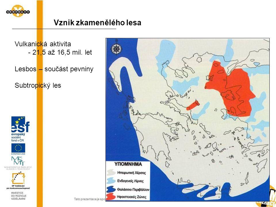 Vznik zkamenělého lesa Vulkanická aktivita - 21,5 až 16,5 mil. let Lesbos – součást pevniny Subtropický les