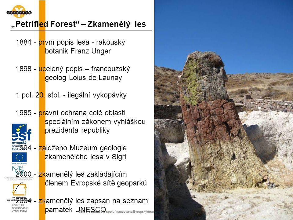 1884 - první popis lesa - rakouský botanik Franz Unger 1898 - ucelený popis – francouzský geolog Loius de Launay 1 pol. 20. stol. - ilegální vykopávky