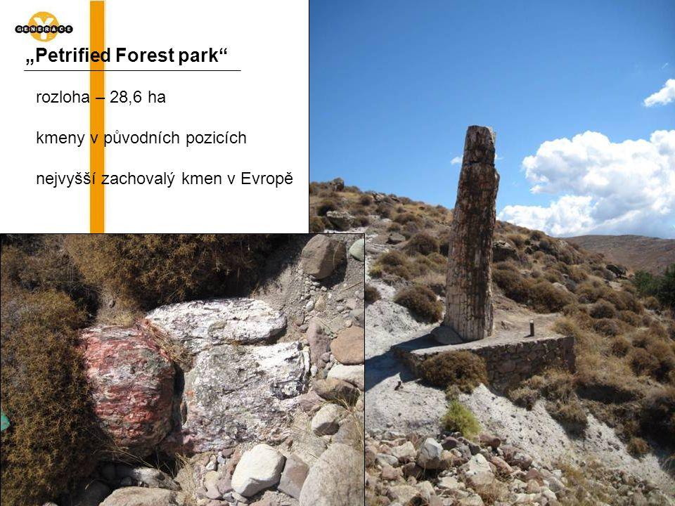 """""""Petrified Forest park"""" rozloha – 28,6 ha kmeny v původních pozicích nejvyšší zachovalý kmen v Evropě"""