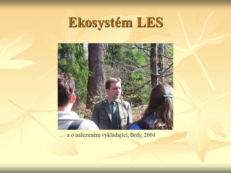 Ekosystém LES … a o nalezeném vykládající, Brdy, 2004