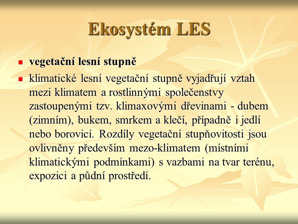 Ekosystém LES vegetační lesní stupně vegetační lesní stupně klimatické lesní vegetační stupně vyjadřují vztah mezi klimatem a rostlinnými společenstvy zastoupenými tzv.