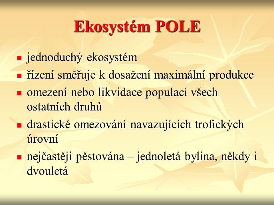 Ekosystém POLE jednoduchý ekosystém jednoduchý ekosystém řízení směřuje k dosažení maximální produkce řízení směřuje k dosažení maximální produkce ome