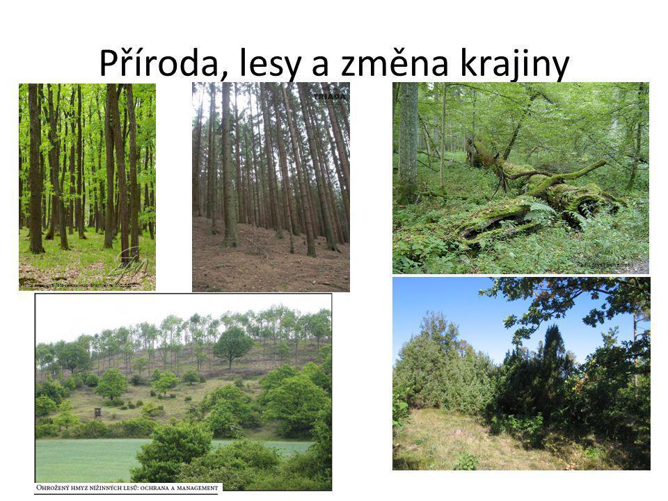 Příroda, lesy a změna krajiny Ralf Lotys (Sicherlich) http://gallery3.foto-sam.cz/index.php/Krajina/IMG_5300