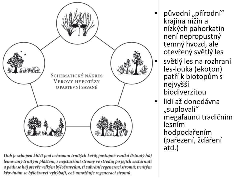 """původní """"přírodní krajina nížin a nízkých pahorkatin není nepropustný temný hvozd, ale otevřený světlý les světlý les na rozhraní les-louka (ekoton) patří k biotopům s nejvyšší biodiverzitou lidi až donedávna """"suplovali megafaunu tradičním lesním hodpodařením (pařezení, žďáření atd.)"""