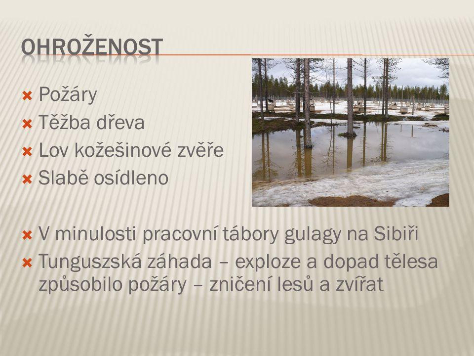  Požáry  Těžba dřeva  Lov kožešinové zvěře  Slabě osídleno  V minulosti pracovní tábory gulagy na Sibiři  Tunguszská záhada – exploze a dopad tě